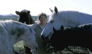 mitten in den Pferden: Pferdewirtschaftsmeisterin Carin Weiß mit ihren Shagya-Araber Zuchtstuten