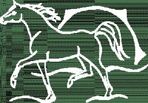 Shagya-Araber Gestüt Mühlen Logo - Pferde mit dem Sonnenbrand am Ostseestrand